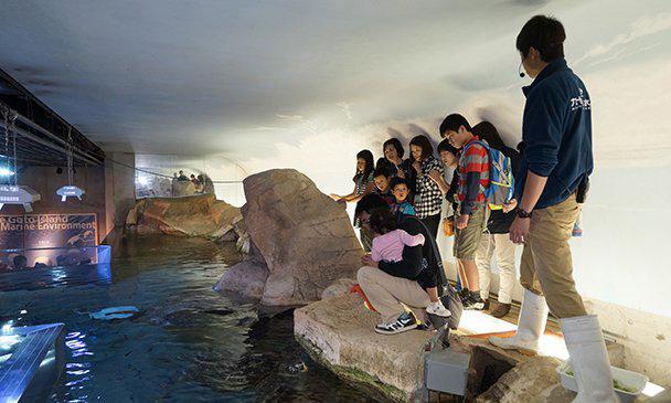 水族館ミステリーツアー-1