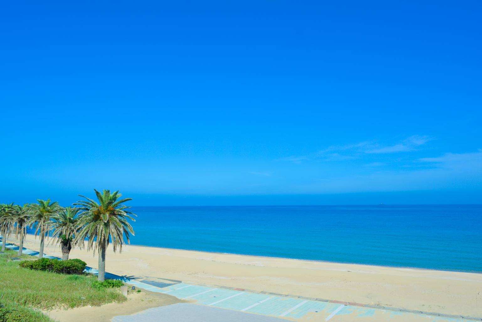 水平線が丸く見える常夏の島、海の大パノラマに感動。-2
