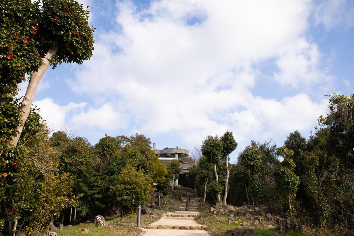 展望台から「九十九島」の絶景を望む-1