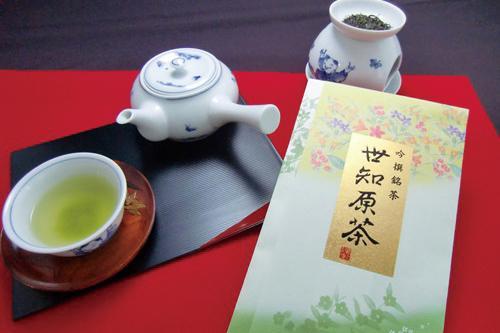 世知原茶-0