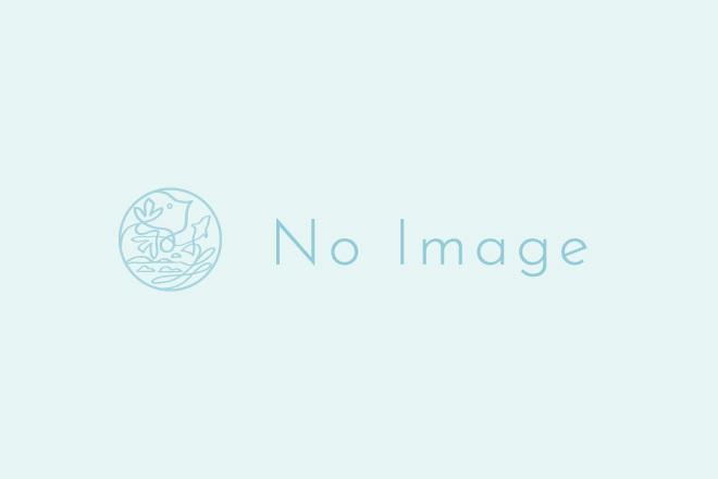 レモンステーキ四季風 980円-2