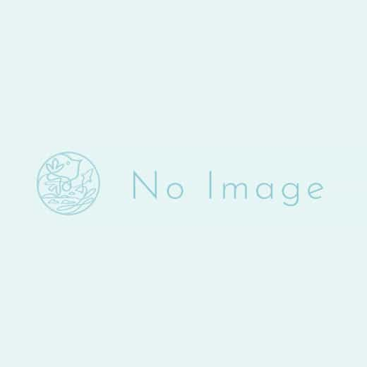 クリスマスディナー 8,800円(税込)-0