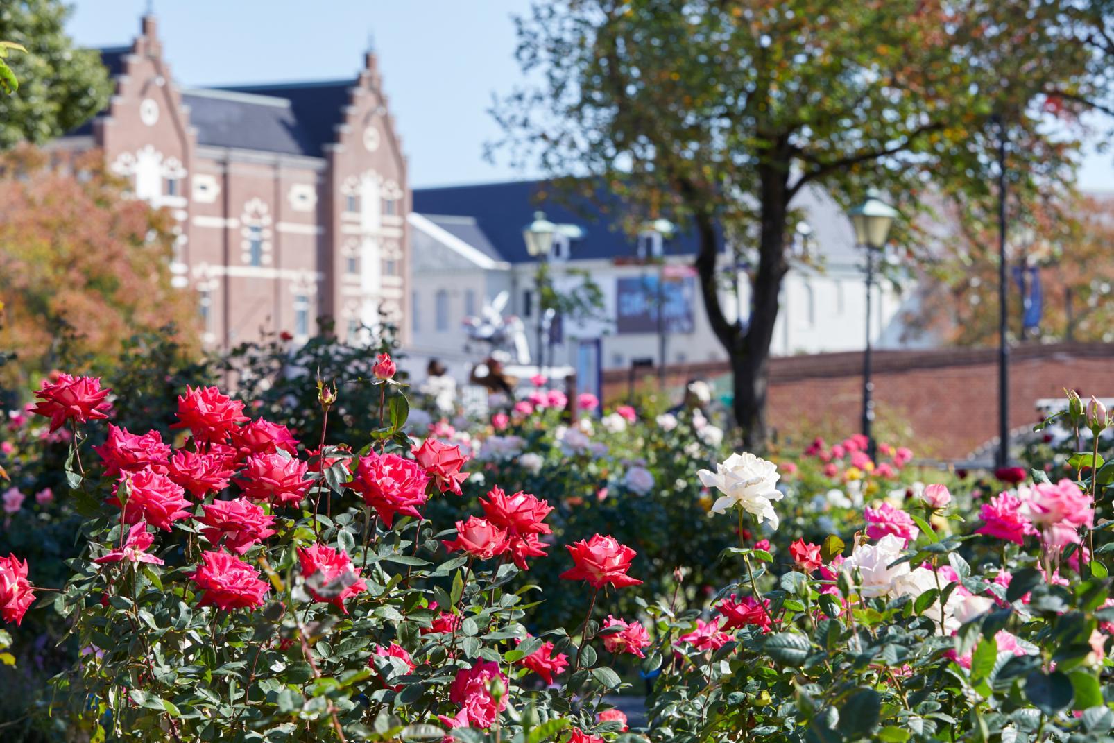 【ハステンボス】花の街の大収穫祭-3