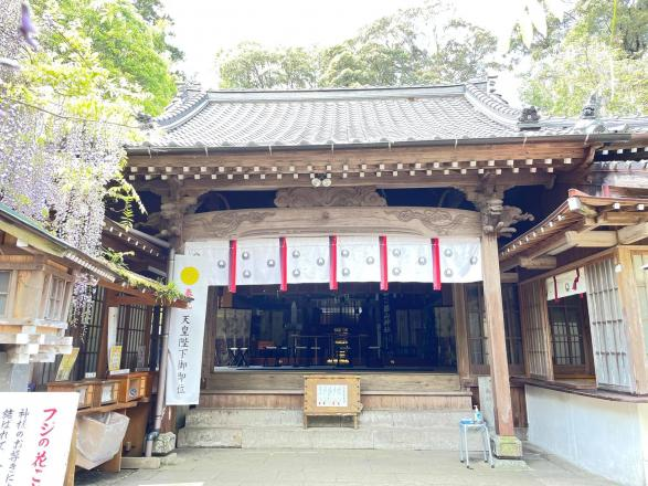 藤山神社-4