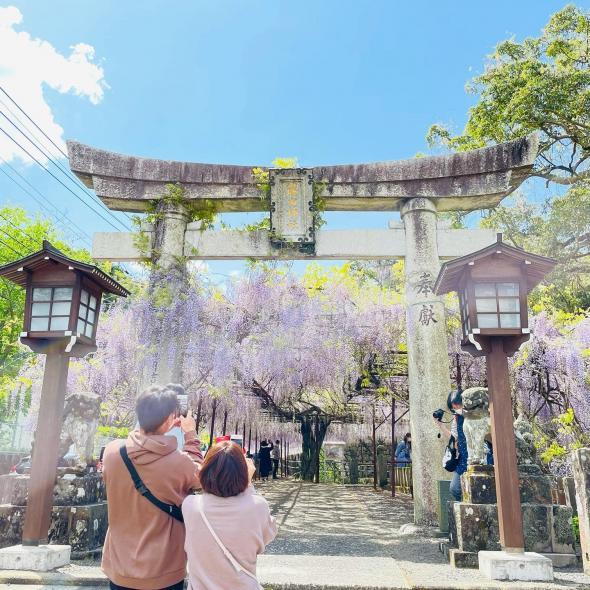 藤山神社-0