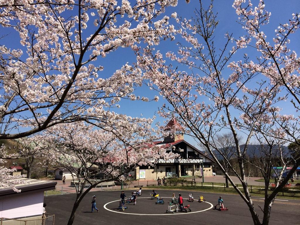 えぼし桜まつり-0