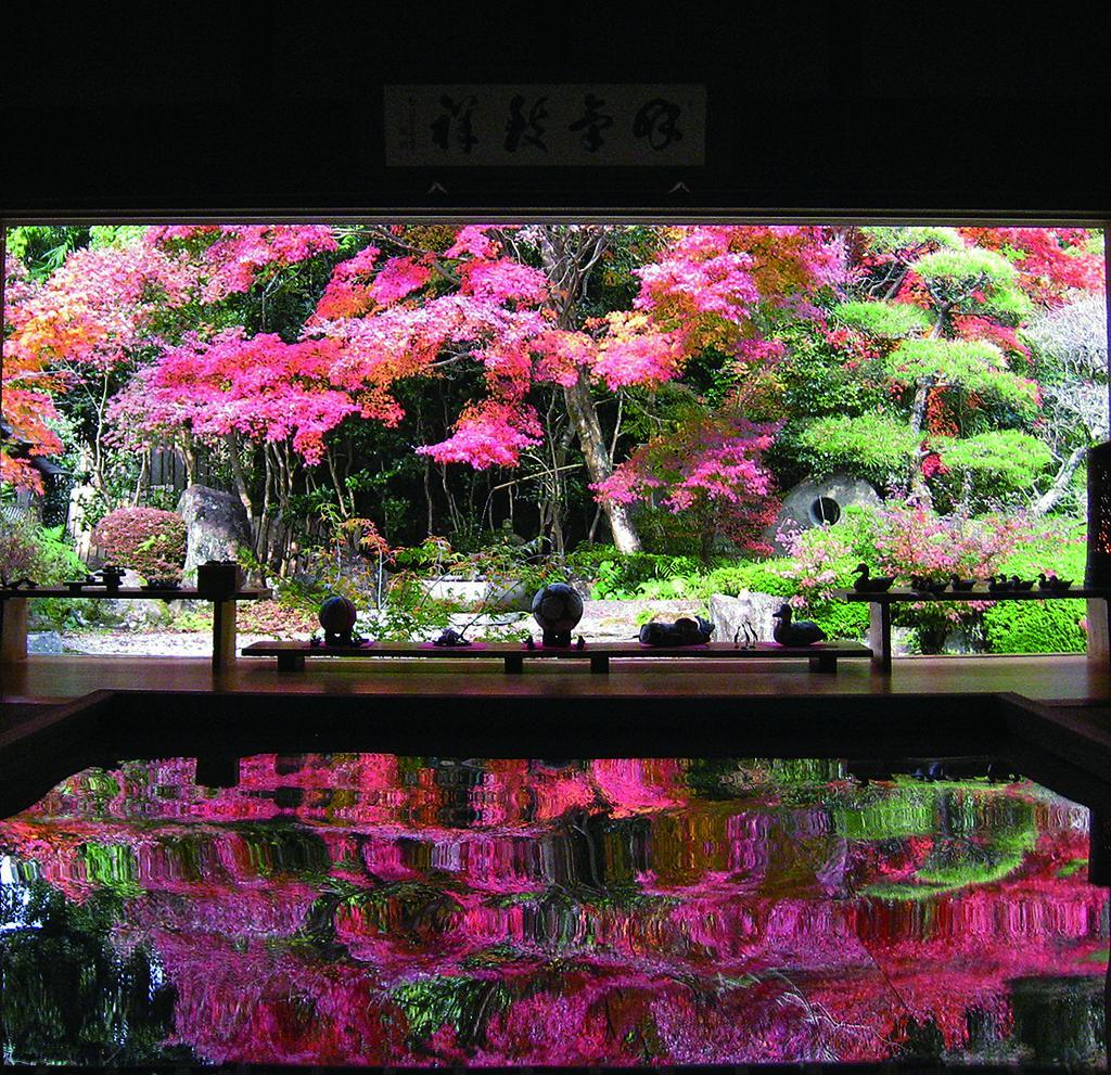 寿福寺-1