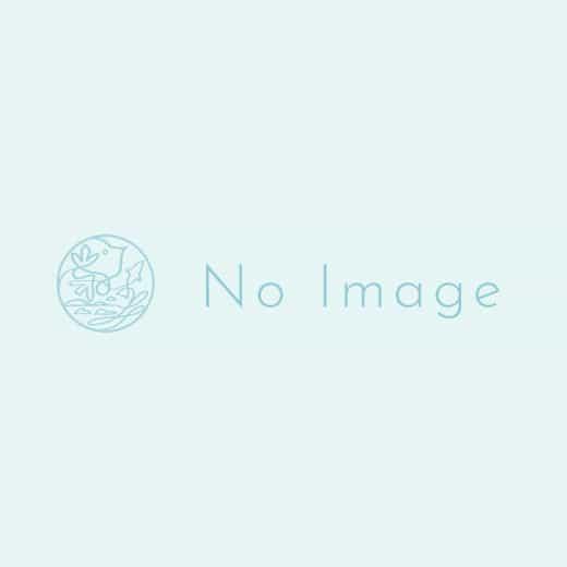 さかな食堂 安べゑ  佐世保山県町店-3