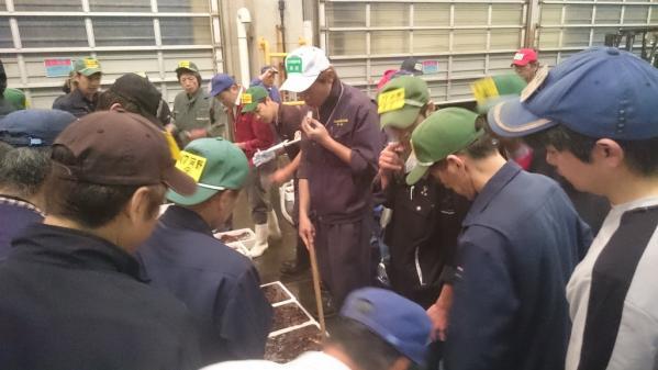 佐世保魚市場株式会社-0